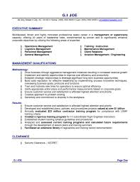Example Of Resume Summary Statements Resume Objective Summary