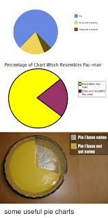 Pyramid Pie Chart Joke Sky Sunny Side Of Pyramid Shady Side Of Pyramid Percentage