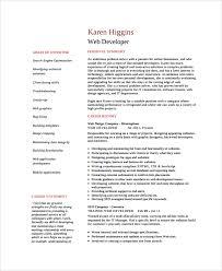 Web Developer Experience Resume