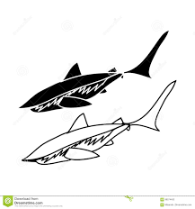 Outline And Shark Silhouette Stock Vector Illustration Of