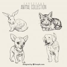 Sketches Animal Sketches Of Beautiful Animals Set Stock Images Page Everypixel