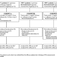 Study Flow Chart Crpc Castration Resistant Prostate Cancer