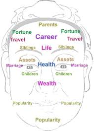 Chinese Medicine Face Reading Chart Chinese Face Reading Leading Personality