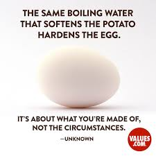 The Same Boiling Water That Softens The Potato Hardens The Egg It's Adorable Soft Quotes