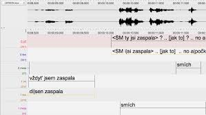 Increasing Speed And Consistency Of Phonetic Transcription Of Spoken