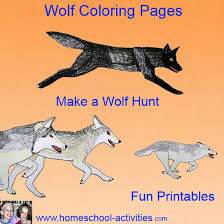 Wolf Coloring Pages Art Projects For Kids
