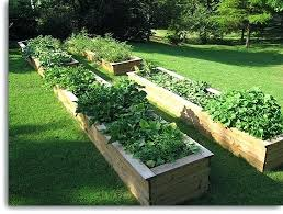 Small Picture Raised Garden Beds Designs pathfinderappco