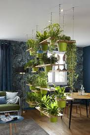 Para ambos os materiais a espessura. Divisoria De Ambiente 60 Modelos De Decoracao Com Fotos Incriveis Plant Decor Indoor Room With Plants Home Decor
