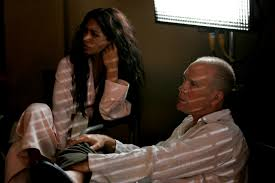 photos of john malkovich natalie becker as soraya and john malkovich as professor david lurie in steve jacobs drama