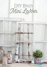 diy-birch-ladder-consumer-crafts-unleashed-1
