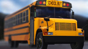 Scott Co. school bus driver urges safe driving after Indiana bus ...