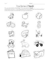 Senses Coloring Pages 5 Senses Coloring Sheets 5 Senses Coloring