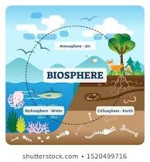 Biosphere Images Stock Photos Vectors Shutterstock