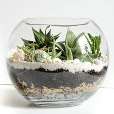 Glass Bowl Decoration Ideas Succulent In The Glass Eye 60 Creative Decoration Ideas With 30