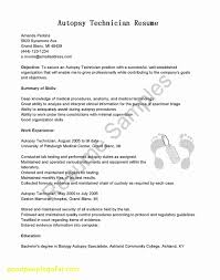 20 Low Voltage Technician Resume | Best Of Resume Example