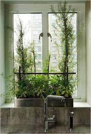which herbs grow well in pots kitchen herb gardens herbs garden window garden