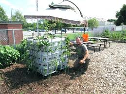 stock tank garden stock tank gardens from start to finish garden water beds made from containers stock tank garden