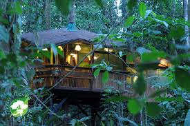 Home  Tree House Plans For Adults Treehouses Of The World Treehouse Accommodation