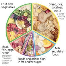 Balanced Meal Chart Healthy Balanced Diet Weekly Menu Offbeat Girl