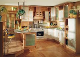 Two Wall Kitchen Design Delightful Kitchen Styles Designs With Square Glass Wall And