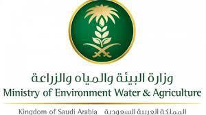 نتائج القبول في وظائف وزارة البيئة 1442 عبر الرابط mewa.gov.sa أسماء  المقبولين وموعد ومكان المقابلة الشخصية - إقرأ نيوز