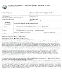 Sample Annual Performance Review Annual Performance Report Template Sample Annual Report Templates