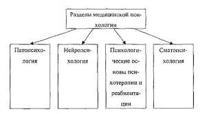ПСИХОЛОГ ЭРГОНОМИСТ это что такое ПСИХОЛОГ ЭРГОНОМИСТ определение  Разделы медицинской психологии патопсихология нейропсихология соматопсихология