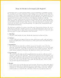 Short Business Report Sample Short Report Sample Template Woodnartstudio Co