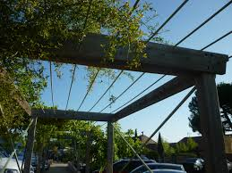 Simple Pergola simple timber and wire pergola structure for a walkway deck 2861 by uwakikaiketsu.us