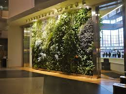 Small Picture Special considerations for walls Growing Green Guide