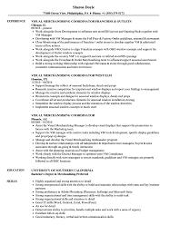 Download Visual Merchandising Coordinator Resume Sample as Image file