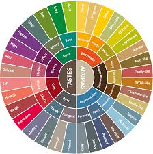 Flavor Profile Chart Aroma And Flavour Descriptors