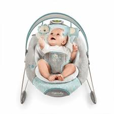 Baby Bouncers & Rockers   Products   Kids II