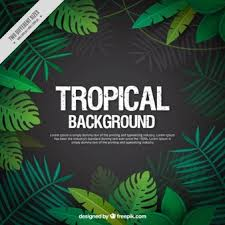jungle background vector.  Jungle Tropical Leaves Background Inside Jungle Background Vector
