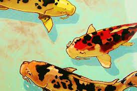 wine and painting koi fish
