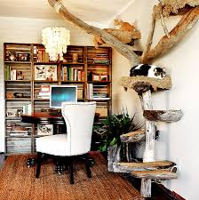 wall shelves office. Wall Shelves For Cats Elegant Another View Of Driftwood Cat Tree With Office Space And Crate L