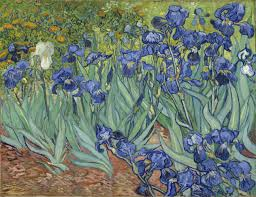 five ways of seeing van gogh s irises the getty iris five ways of seeing van gogh s