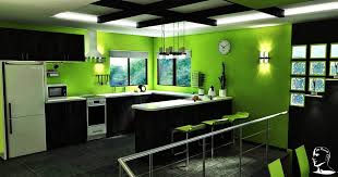 Cool Kitchen Paint Colors With Dark Cabinet