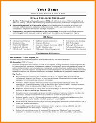 Resume Templates Doc Examples Cv Template Word Document