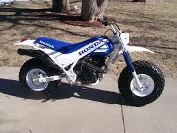 tr200 fatcat adventure rider