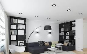 Black And White Living Room Idea With Great Sofa And Bookshelf Idea