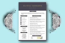Top One Page Resume Templates With Simple To Use Examples Cv