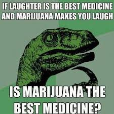 Top 10 Weed Memes of 2014 | PlayBuzz via Relatably.com