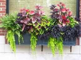 Superior Full Size Of Garden Patio Planter Ideas Small Planter Ideas Great Planter  Ideas Yard Planter Ideas ...