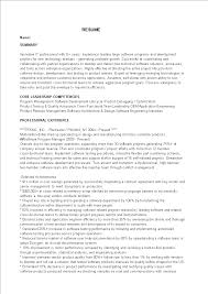 Free Software Program Manager Resume Templates At