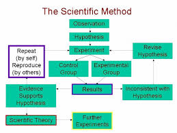 "scientific method   questions and observationsas you can see  there is a very important box outlined in blue among all the other boxes in the flow chart  the words ""reproduce  by others "" refers to"
