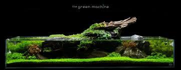 Nano Aquarium Design Aqua Scape Art The Green Machine Aquascaping Book