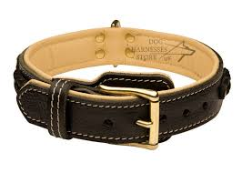 royal dog collars