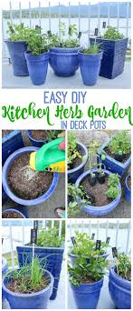Herb Garden For Kitchen Easy Diy Kitchen Herb Garden In Deck Pots The Happy Housie