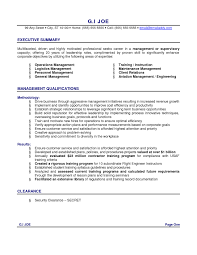 Accountant Resume Summary Executive Accounting Example Examples